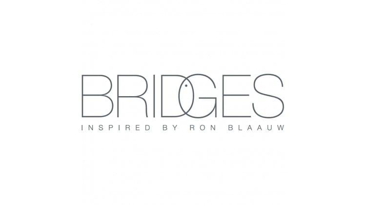 Bridges inspired by Ron Blaauw