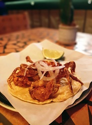 Fiona Mexicaans restaurant Amsterdam Centrum Warmoesstraat softshell crab tabo